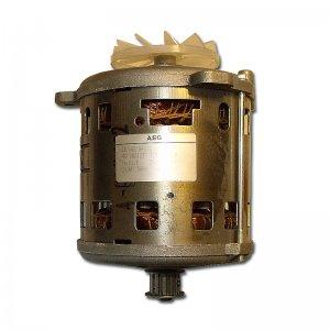 Industriemotor  für Revo-Mühle (Bösen) *noch 1 Stück verfügbar*